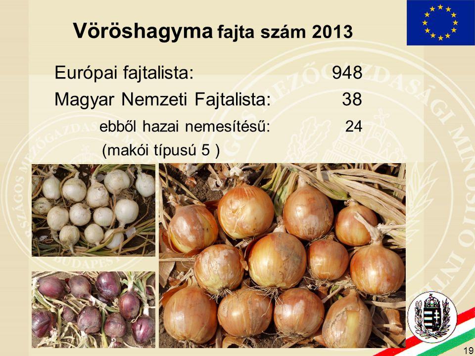 19 Vöröshagyma fajta szám 2013 Európai fajtalista: 948 Magyar Nemzeti Fajtalista: 38 ebből hazai nemesítésű: 24 (makói típusú 5 )