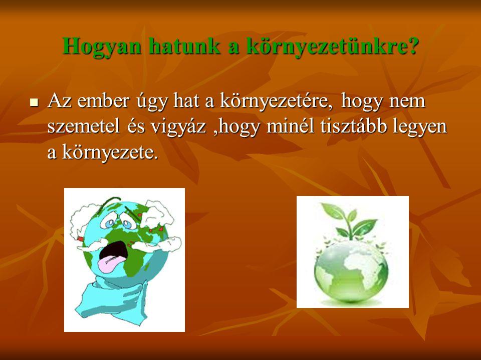 Hogyan hatunk a környezetünkre? Az ember úgy hat a környezetére, hogy nem szemetel és vigyáz,hogy minél tisztább legyen a környezete. Az ember úgy hat