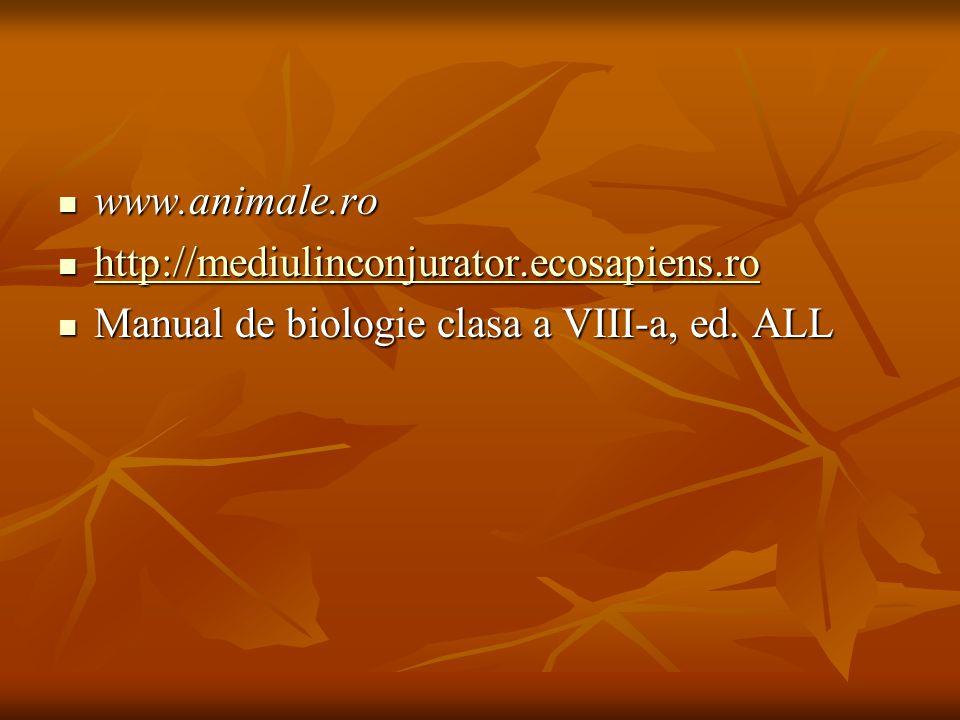 www.animale.ro www.animale.ro http://mediulinconjurator.ecosapiens.ro http://mediulinconjurator.ecosapiens.ro http://mediulinconjurator.ecosapiens.ro
