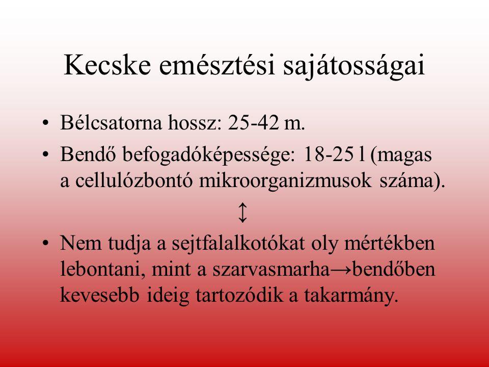 Kecske emésztési sajátosságai Bélcsatorna hossz: 25-42 m. Bendő befogadóképessége: 18-25 l (magas a cellulózbontó mikroorganizmusok száma). ↕ Nem tudj
