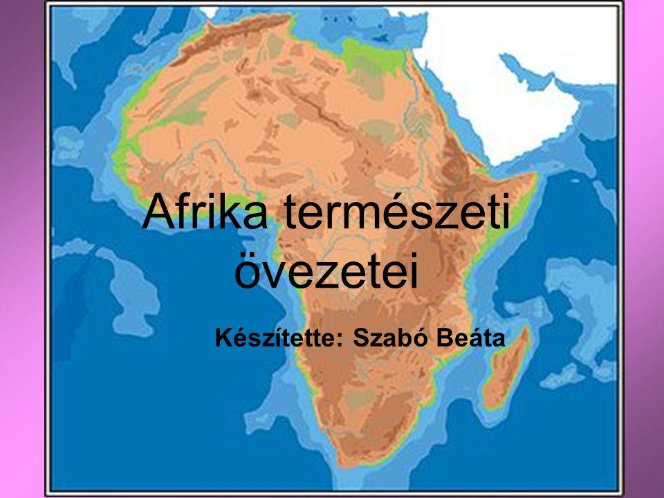 Afrika természeti övezetei Készítette: Szabó Beáta