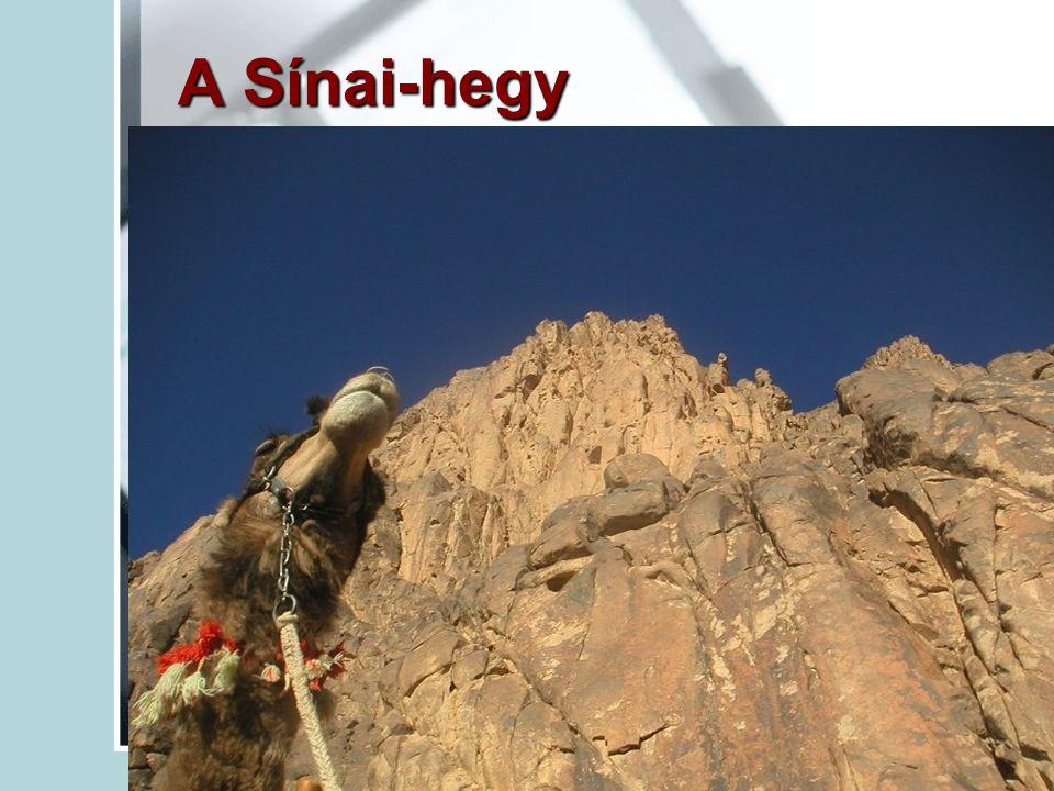 A Sínai-hegy