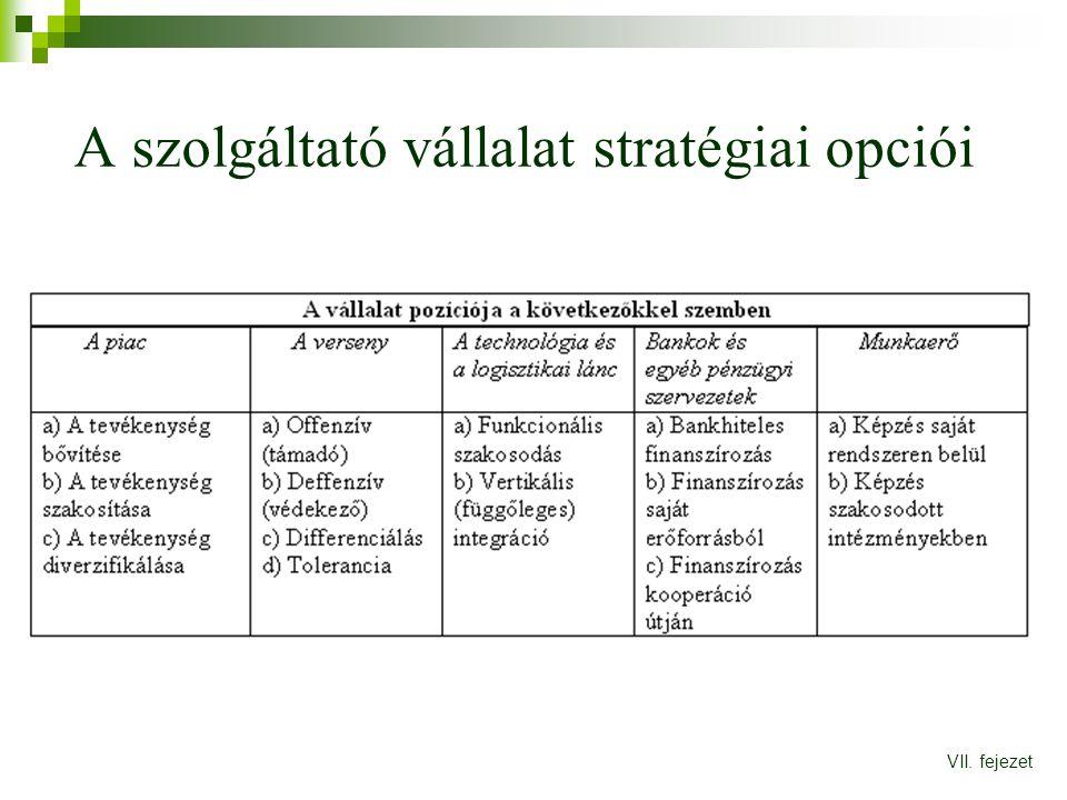 A szolgáltató vállalat stratégiai opciói VII. fejezet