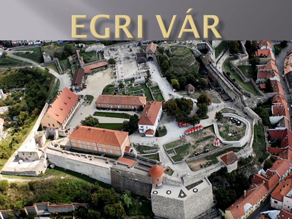  A várat a tatárjárás után kezdték építeni, és az azt követő évszázadokban mindig fontos stratégiai szerepe volt, de hírnevét 1552-ben vívta ki.