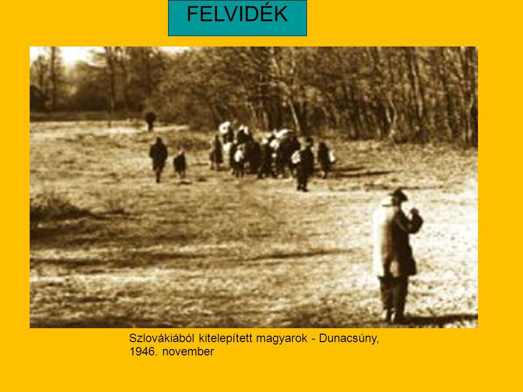 Szlovákiából kitelepített magyarok - Dunacsúny, 1946. november FELVIDÉK