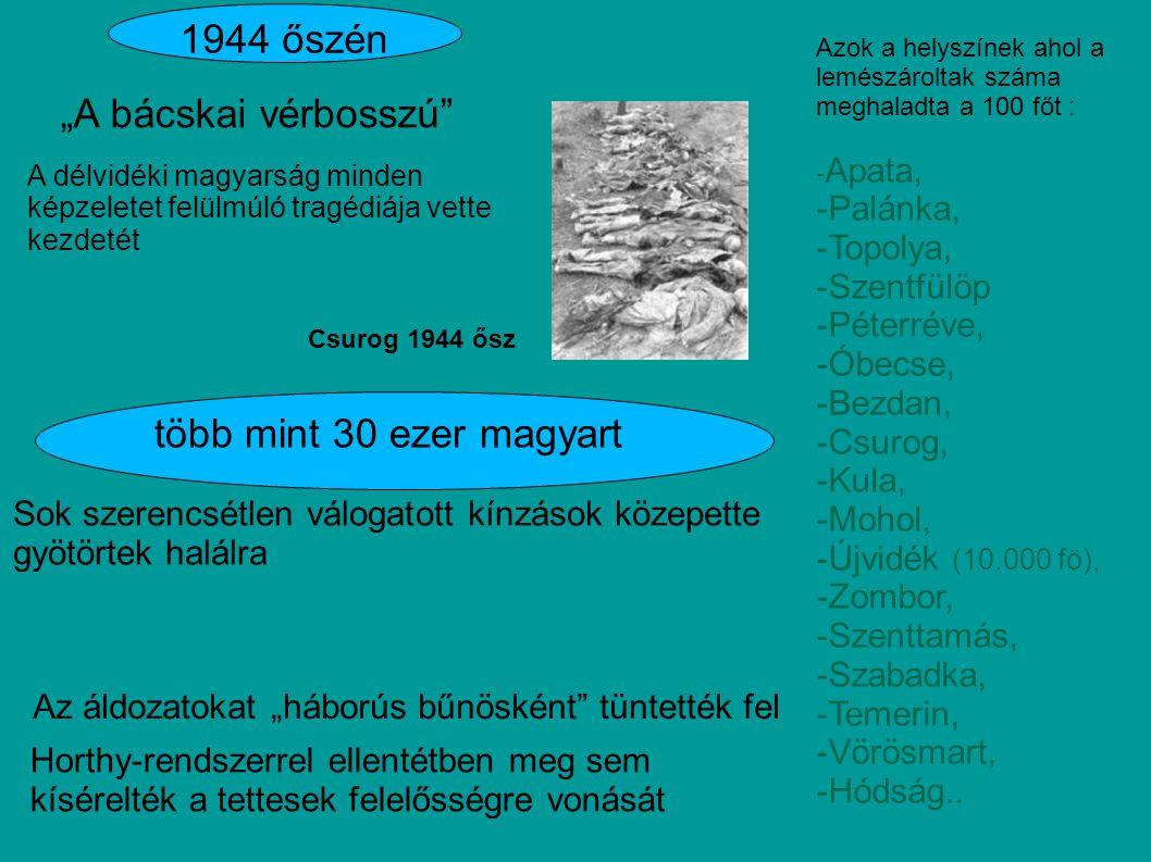 """""""A bácskai vérbosszú"""" Csurog 1944 ősz 1944 őszén A délvidéki magyarság minden képzeletet felülmúló tragédiája vette kezdetét Sok szerencsétlen válogat"""