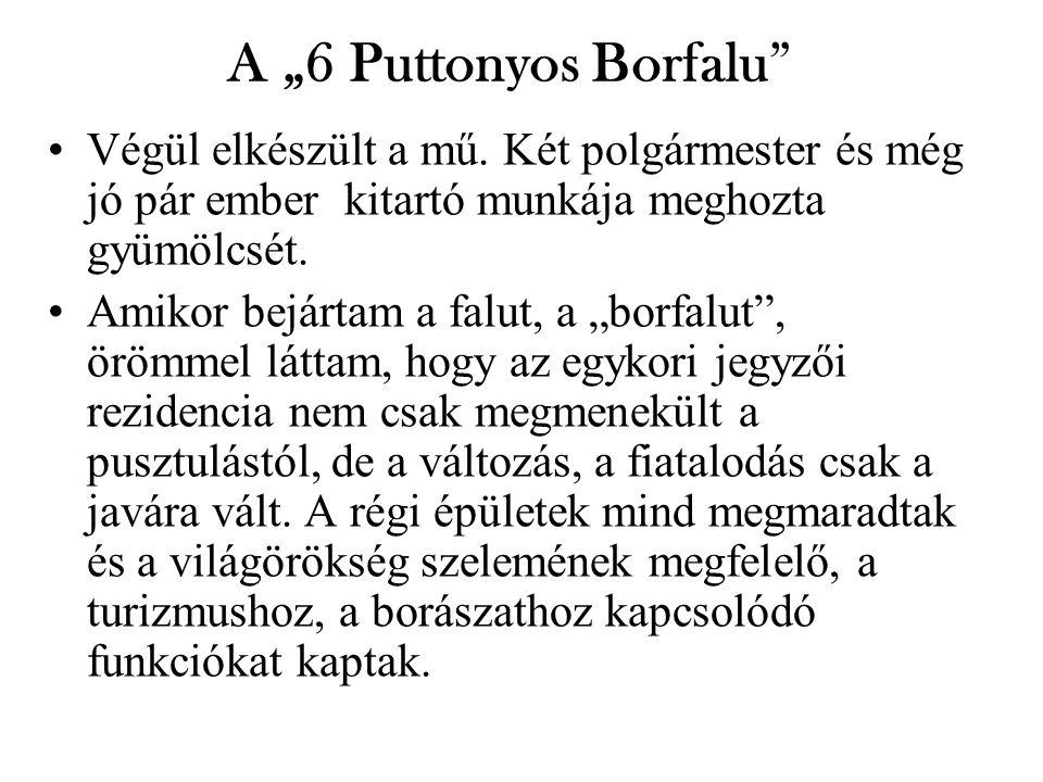 """A """"6 Puttonyos Borfalu Végül elkészült a mű."""