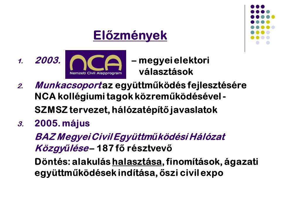El ő zmények 1. 2003. – megyei elektori választások 2.