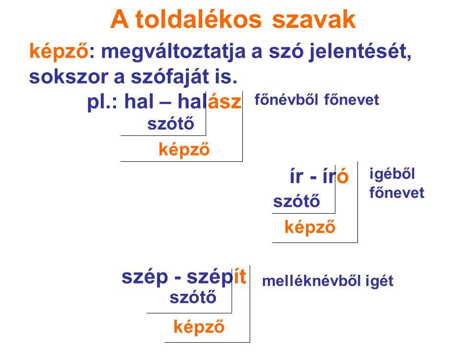 A toldalékos szavak képző: megváltoztatja a szó jelentését, sokszor a szófaját is. pl.: hal – halász ír - író szép - szépít szótő képző főnévből főnev