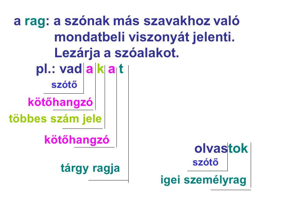 a rag: a szónak más szavakhoz való mondatbeli viszonyát jelenti. Lezárja a szóalakot. pl.: vad a k a t olvastok szótő kötőhangzó többes szám jele kötő