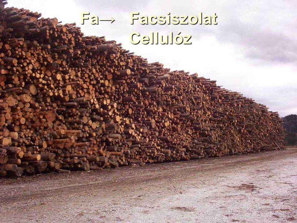 09:509:16 Ha a fát mechanikai úton-csiszolással elemi rostjaira bontjuk, akkor facsiszolatot kapunk.