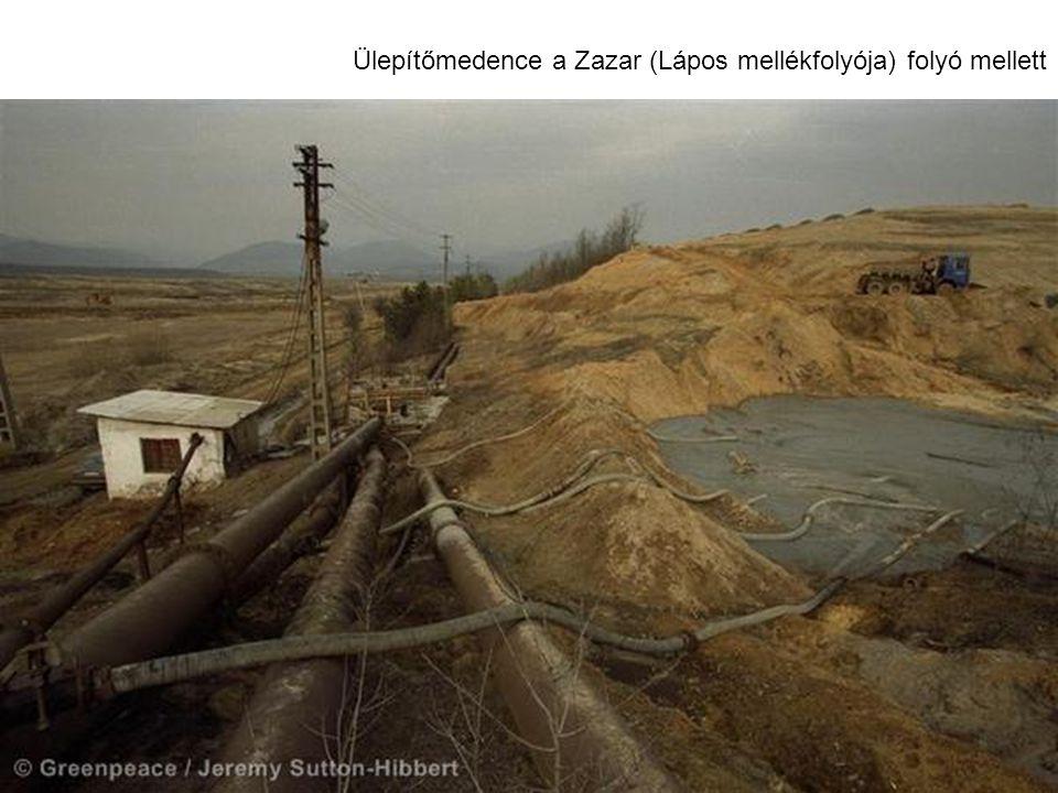 Ülepítőmedence a Zazar (Lápos mellékfolyója) folyó mellett