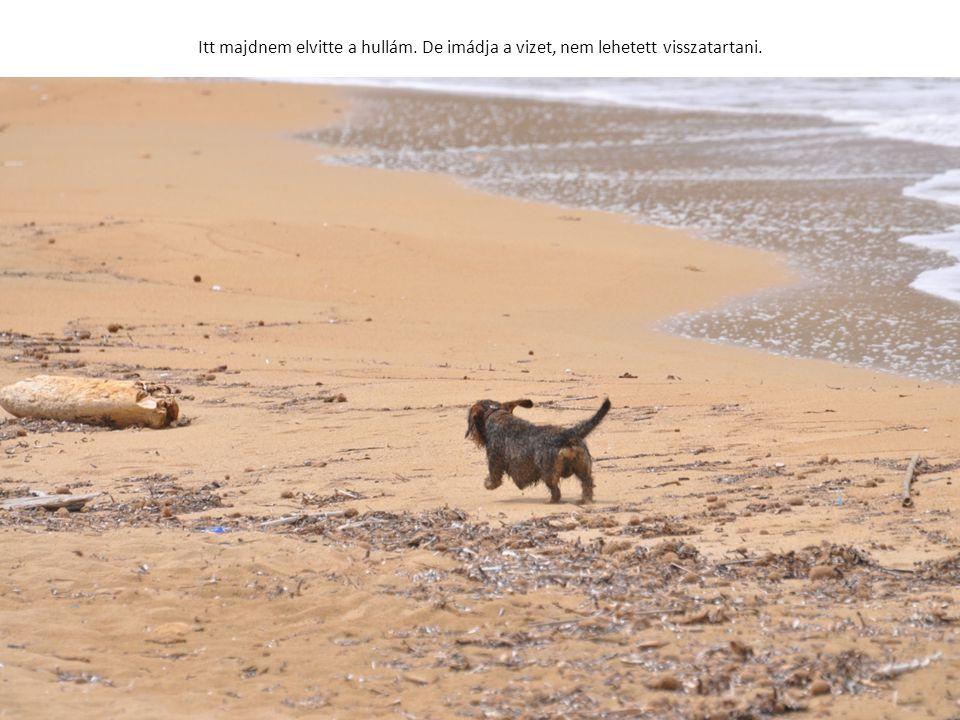 Itt majdnem elvitte a hullám. De imádja a vizet, nem lehetett visszatartani.