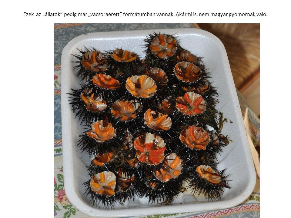 """Ezek az """"állatok"""" pedig már """"vacsoraérett"""" formátumban vannak. Akármi is, nem magyar gyomornak való."""