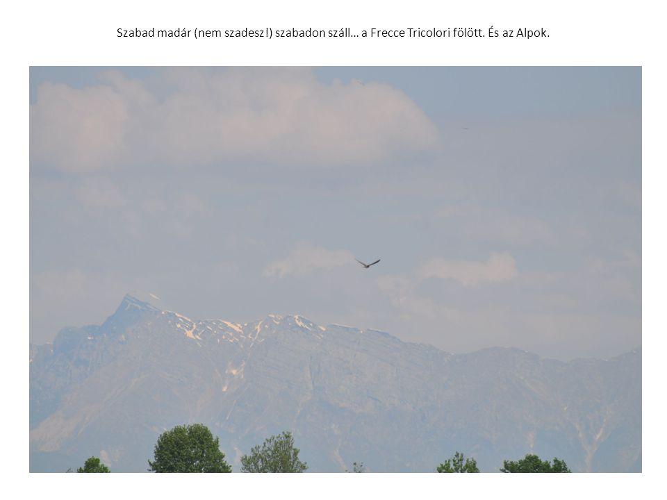 Szabad madár (nem szadesz!) szabadon száll… a Frecce Tricolori fölött. És az Alpok.