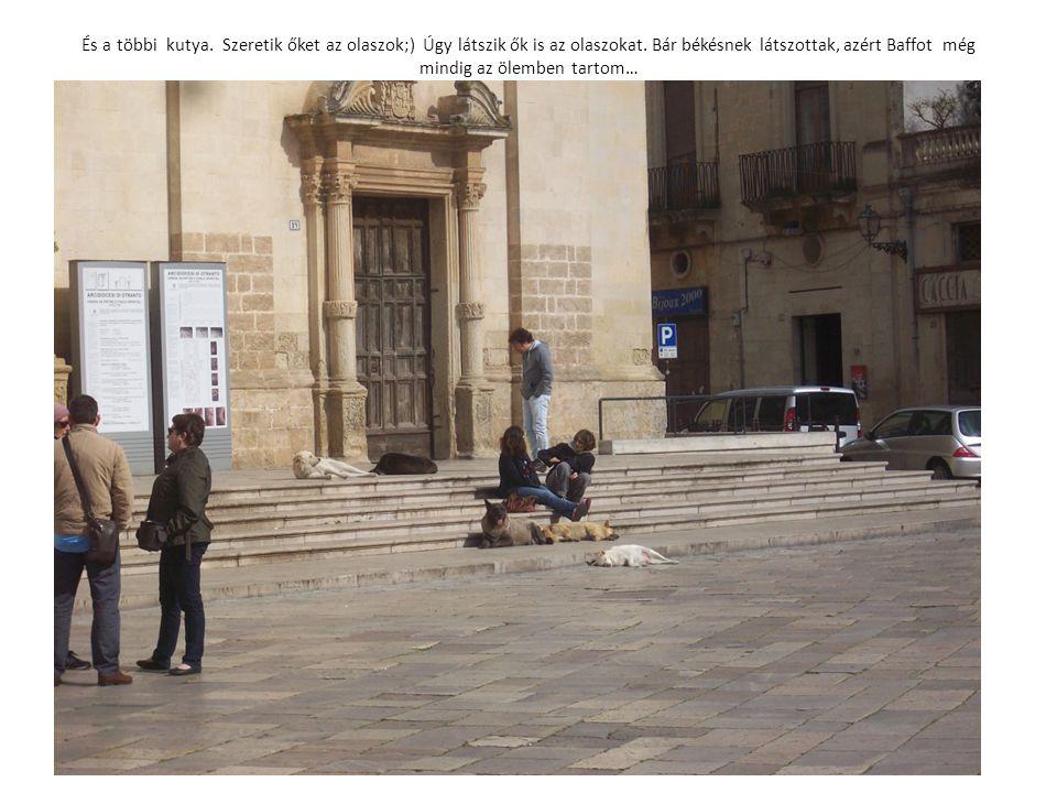 És a többi kutya. Szeretik őket az olaszok;) Úgy látszik ők is az olaszokat. Bár békésnek látszottak, azért Baffot még mindig az ölemben tartom…