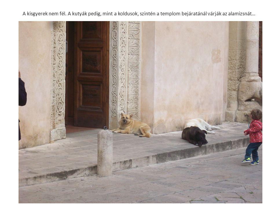 A kisgyerek nem fél. A kutyák pedig, mint a koldusok, szintén a templom bejáratánál várják az alamizsnát…