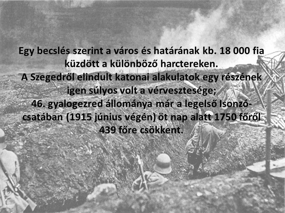 Egy becslés szerint a város és határának kb.18 000 fia küzdött a különböző harctereken.