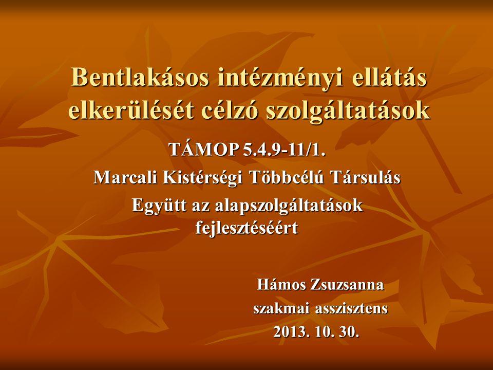 Bentlakásos intézményi ellátás elkerülését célzó szolgáltatások TÁMOP 5.4.9-11/1.
