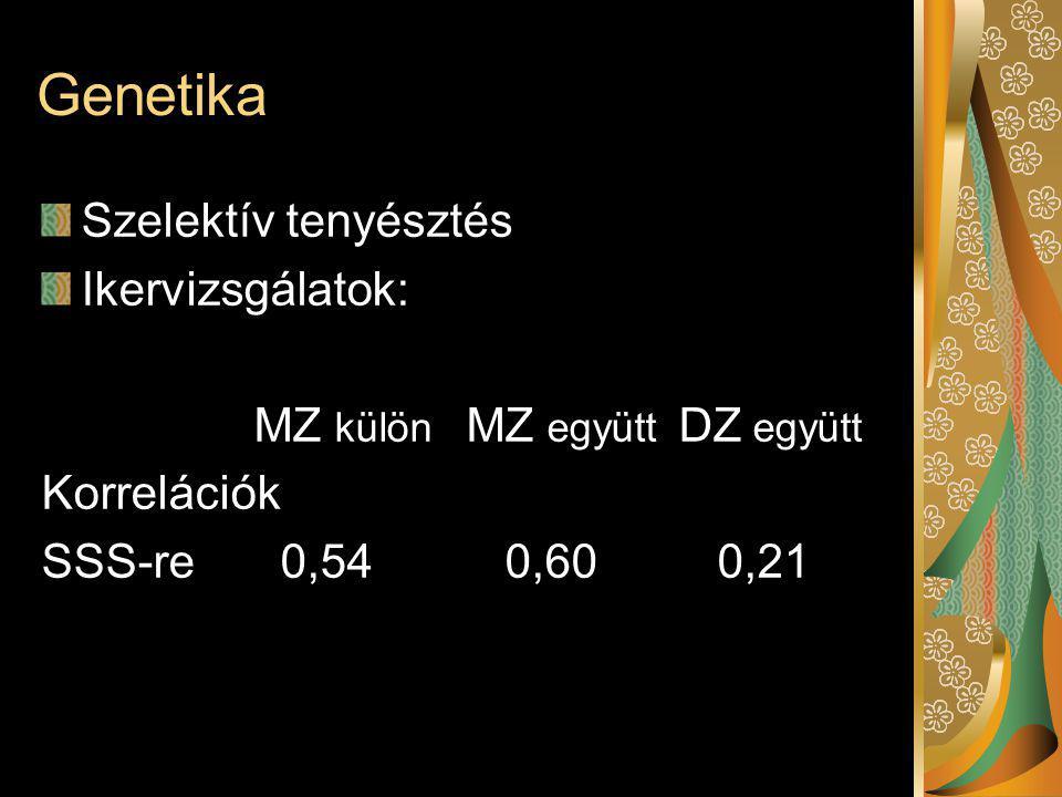Genetika Szelektív tenyésztés Ikervizsgálatok: MZ külön MZ együtt DZ együtt Korrelációk SSS-re 0,54 0,60 0,21