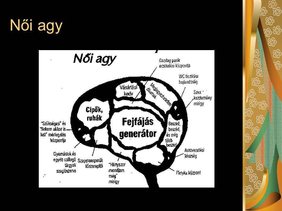 Női agy