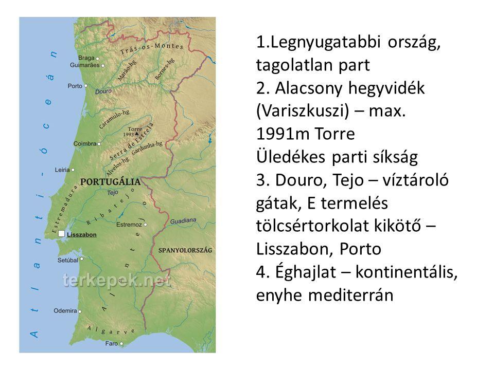 1.Legnyugatabbi ország, tagolatlan part 2. Alacsony hegyvidék (Variszkuszi) – max. 1991m Torre Üledékes parti síkság 3. Douro, Tejo – víztároló gátak,
