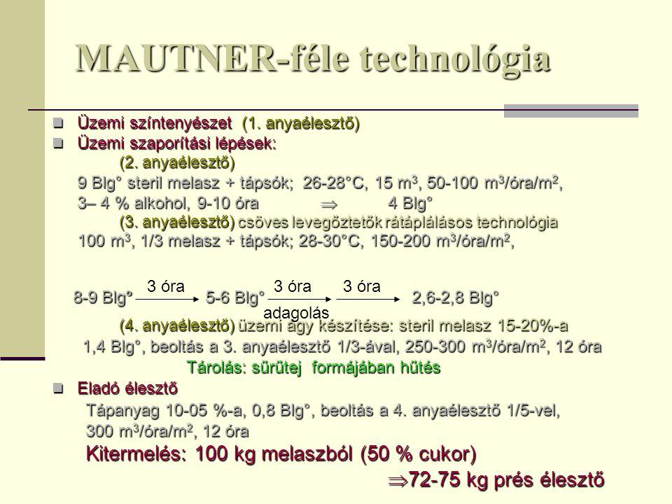 MAUTNER-féle technológia Üzemi színtenyészet (1. anyaélesztő) Üzemi színtenyészet (1. anyaélesztő) Üzemi szaporítási lépések: Üzemi szaporítási lépése