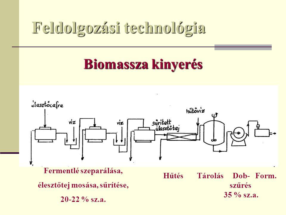 Feldolgozási technológia Biomassza kinyerés Fermentlé szeparálása, élesztőtej mosása, sűrítése, 20-22 % sz.a. Hűtés Tárolás Dob- Form. szűrés 35 % sz.