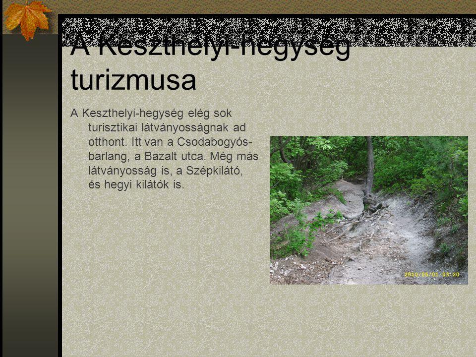 A Keszthelyi-hegység turizmusa A Keszthelyi-hegység elég sok turisztikai látványosságnak ad otthont.