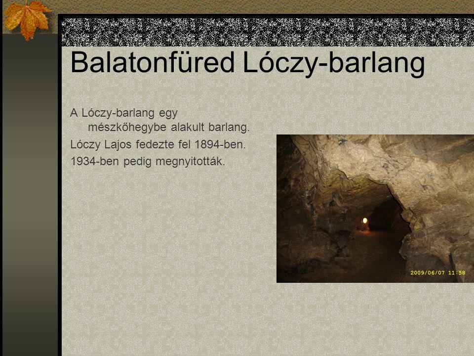 Balatonfüred Lóczy-barlang A Lóczy-barlang egy mészkőhegybe alakult barlang.