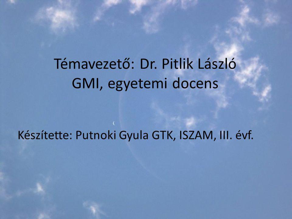 Témavezető: Dr. Pitlik László GMI, egyetemi docens Készítette: Putnoki Gyula GTK, ISZAM, III. évf.