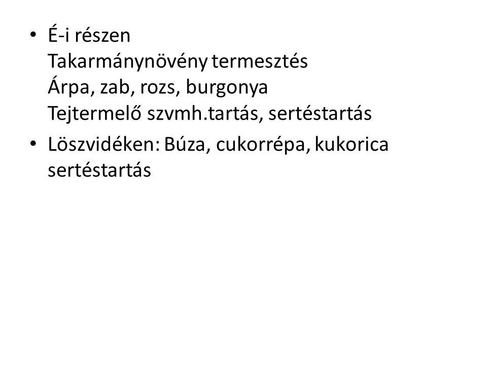 É-i részen Takarmánynövény termesztés Árpa, zab, rozs, burgonya Tejtermelő szvmh.tartás, sertéstartás Löszvidéken: Búza, cukorrépa, kukorica sertéstar