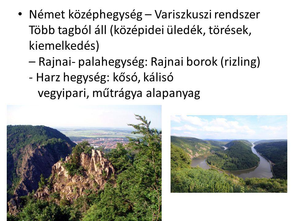 Német középhegység – Variszkuszi rendszer Több tagból áll (középidei üledék, törések, kiemelkedés) – Rajnai- palahegység: Rajnai borok (rizling) - Harz hegység: kősó, kálisó vegyipari, műtrágya alapanyag