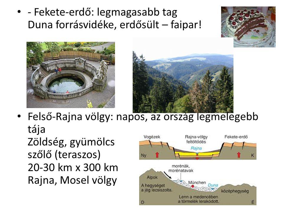 - Fekete-erdő: legmagasabb tag Duna forrásvidéke, erdősült – faipar! Felső-Rajna völgy: napos, az ország legmelegebb tája Zöldség, gyümölcs szőlő (ter