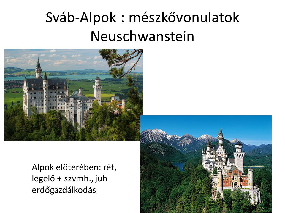 Sváb-Alpok : mészkővonulatok Neuschwanstein Alpok előterében: rét, legelő + szvmh., juh erdőgazdálkodás