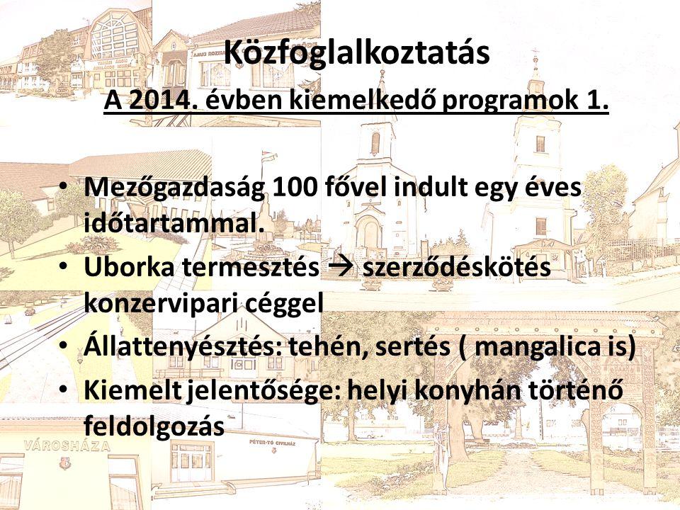 Közfoglalkoztatás 2014.Évben kiemelkedő programok 2.