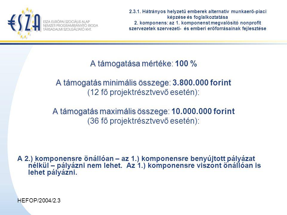 HEFOP/2004/2.3 2.3.1. Hátrányos helyzetű emberek alternatív munkaerő-piaci képzése és foglalkoztatása 2. komponens: az 1. komponenst megvalósító nonpr