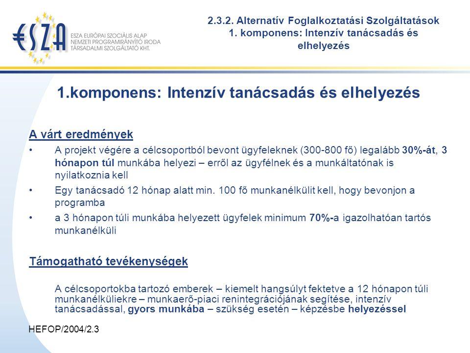 HEFOP/2004/2.3 1.komponens: Intenzív tanácsadás és elhelyezés A várt eredmények A projekt végére a célcsoportból bevont ügyfeleknek (300-800 fő) legalább 30%-át, 3 hónapon túl munkába helyezi – erről az ügyfélnek és a munkáltatónak is nyilatkoznia kell Egy tanácsadó 12 hónap alatt min.