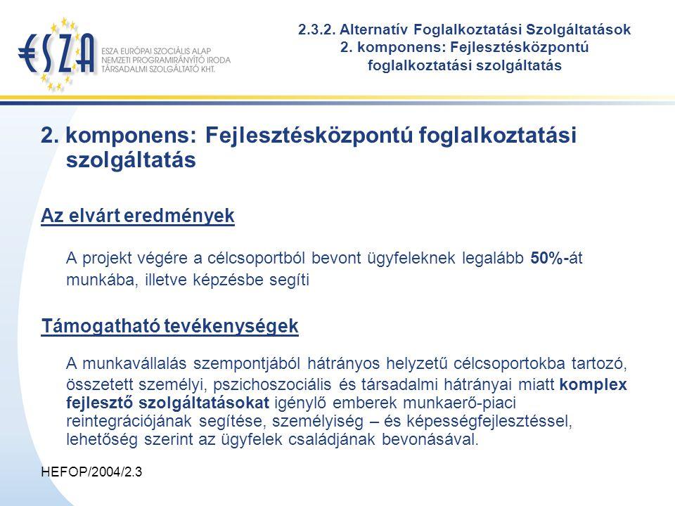 HEFOP/2004/2.3 2. komponens: Fejlesztésközpontú foglalkoztatási szolgáltatás Az elvárt eredmények A projekt végére a célcsoportból bevont ügyfeleknek