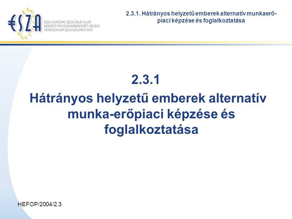 HEFOP/2004/2.3 Célkitűzések a jelenleginél több integrált megközelítésű alternatív képzési projekt létrejöttének elősegítése a projektek gerincét a képzés részeként csoportban, védett körülmények között végzett, de idővel a piac kihívásainak is megfelelni tudó termelés vagy szolgáltatás (a foglalkoztatás) képezze az alternatív foglakozatásba ágyazott képzést vállaló non-profit szervezetek szervezeti és emberi erőforrásainak fejlesztése a munkanélküliek segítését szolgáló helyi erőforrások fejlesztése az integrált megközelítésű, alternatív képzési modell intézményesülésének elősegítése 2.3.1.