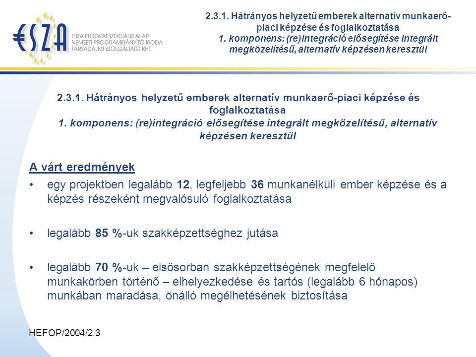 HEFOP/2004/2.3 2.3.1. Hátrányos helyzetű emberek alternatív munkaerő-piaci képzése és foglalkoztatása 1. komponens: (re)integráció elősegítése integrá