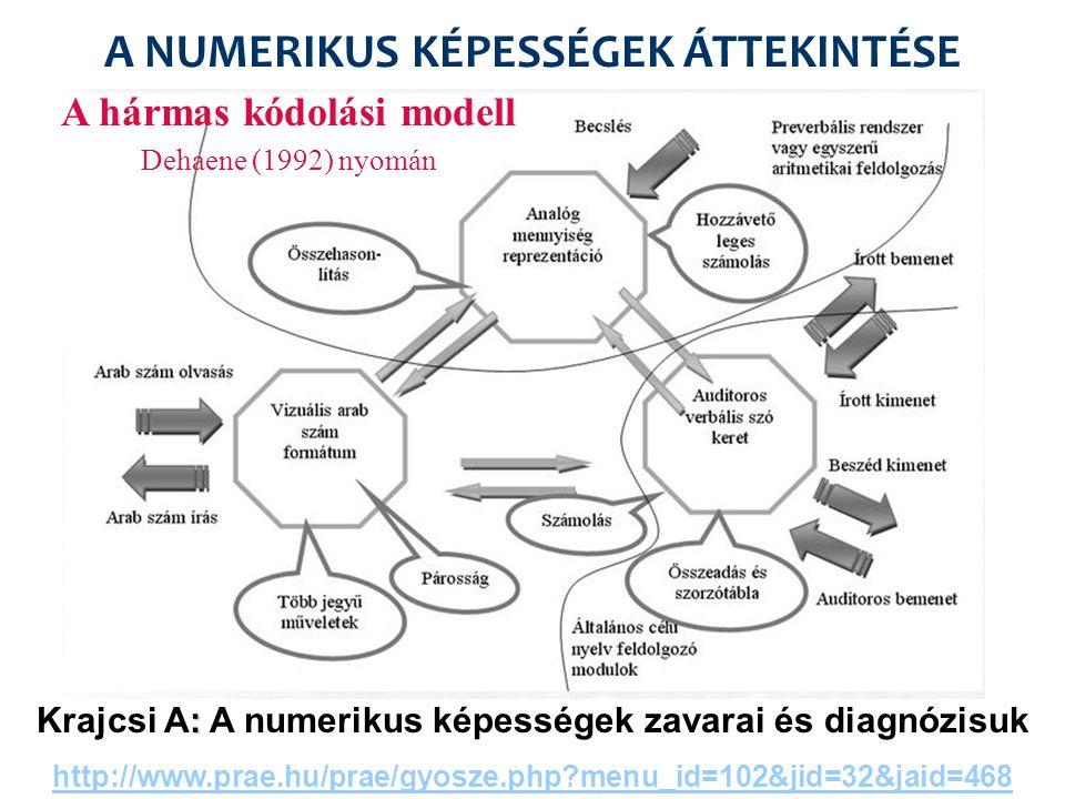 Idegtudományi modellek (McCLOSKEY 1992; DEHAENE 1992, 2003) Mit vizsgál.