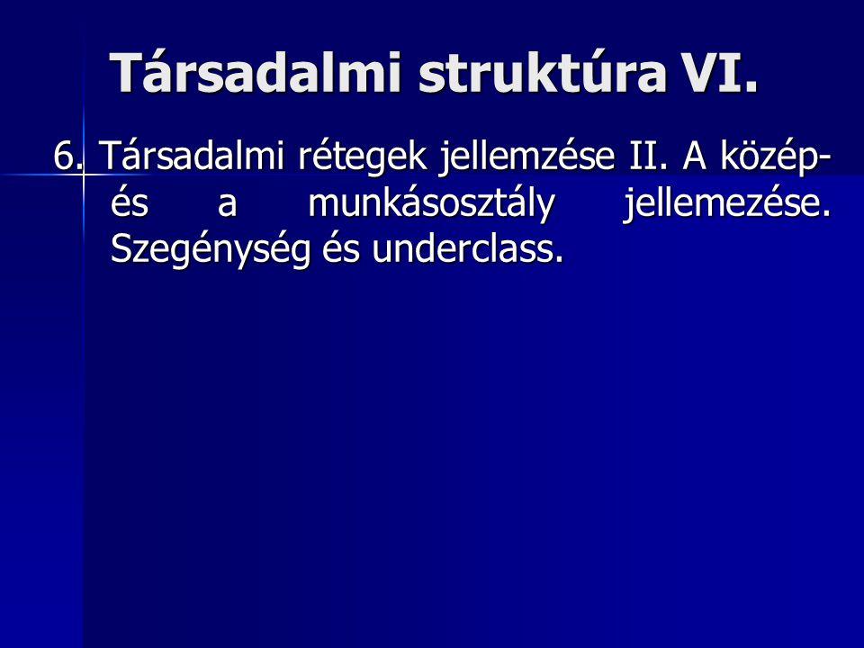 Társadalmi struktúra VI.6. Társadalmi rétegek jellemzése II.
