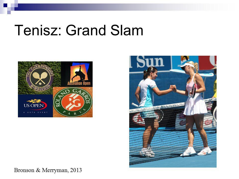 Tenisz: Grand Slam Bronson & Merryman, 2013