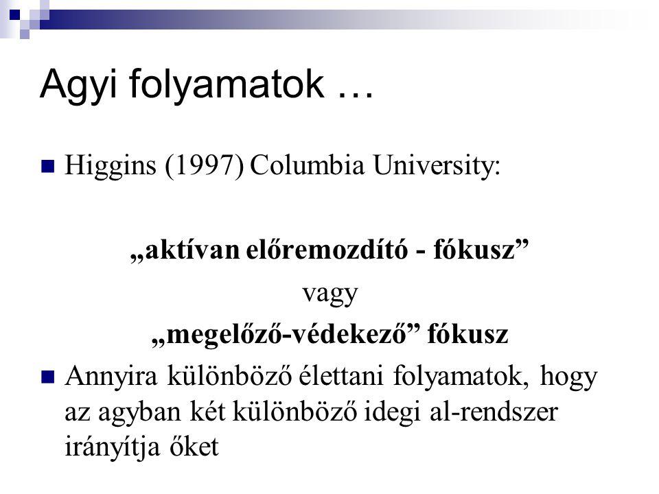 """Agyi folyamatok … Higgins (1997) Columbia University: """"aktívan előremozdító - fókusz"""" vagy """"megelőző-védekező"""" fókusz Annyira különböző élettani folya"""
