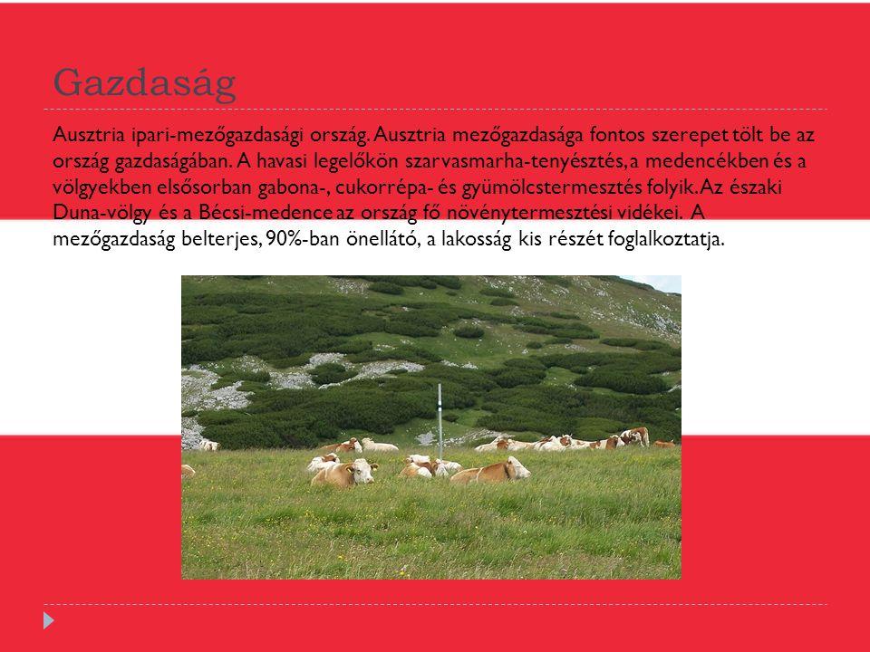 Gazdaság Ausztria ipari-mezőgazdasági ország. Ausztria mezőgazdasága fontos szerepet tölt be az ország gazdaságában. A havasi legelőkön szarvasmarha-t