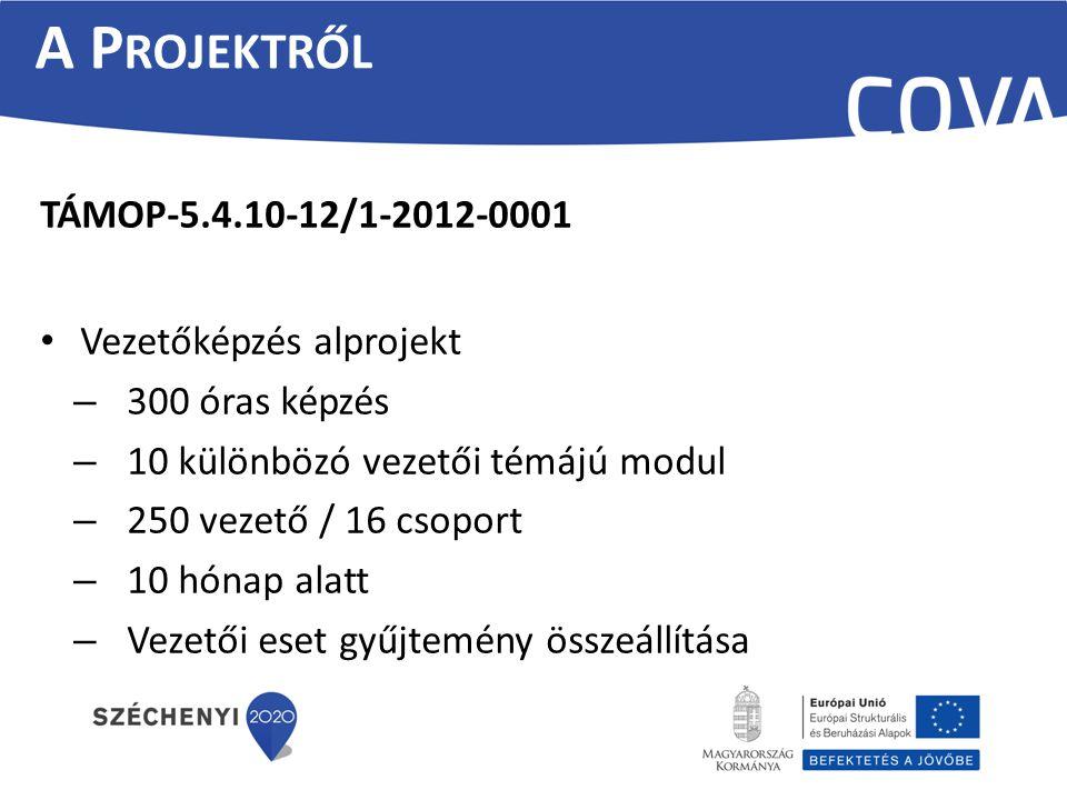 TÁMOP-5.4.10-12/1-2012-0001 Vezetőképzés alprojekt – 300 óras képzés – 10 különbözó vezetői témájú modul – 250 vezető / 16 csoport – 10 hónap alatt –
