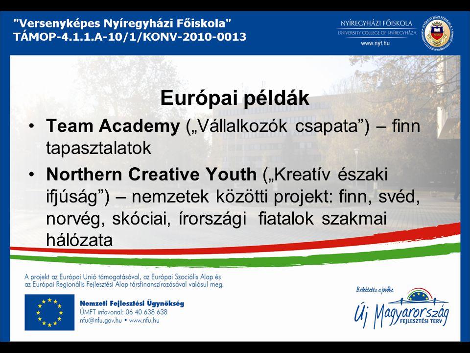 """Európai példák Team Academy (""""Vállalkozók csapata"""") – finn tapasztalatok Northern Creative Youth (""""Kreatív északi ifjúság"""") – nemzetek közötti projekt"""