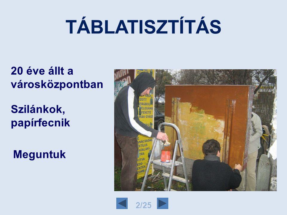 FIATALOK RÁKOSMENTÉÉRT EGYESÜLET 2/24