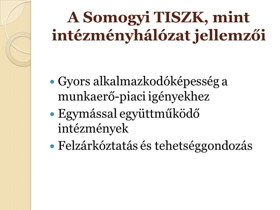 A Somogyi TISZK, mint intézményhálózat jellemzői Gyors alkalmazkodóképesség a munkaerő-piaci igényekhez Egymással együttműködő intézmények Felzárkózta